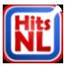 HitsNL logo website